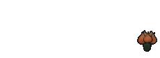 Karen Hott Interiors